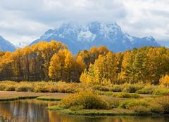 Mount Moran (Bonnie Bowne) Tags: grandteton mountmoran fall autumn oxbow snakeriver wyoming