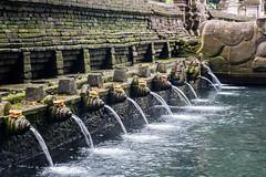 holy water at Tirta Empul near Tampaksiring (Tim&Elisa) Tags: bali indonesia asia canon water tampaksiring tirtaempul temple sacred
