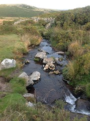 Dartmoor - East Dart River (andreboeni) Tags: dartmoor national park devon east dart river stream source moor moors moorland