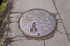 Utility cover (Frank Fujimoto) Tags: ogimachi japan