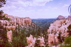 Bryce Canyon National Park, Utah (USA) - June 2016 (SridharSaraf) Tags: 2016 brycecanyon brycecanyonnationalpark brycecanyonphotography nationalpark nationalparkphotography photography sridharsaraf summer usa ut utphotography unitedstates unitedstatesofamerica untedstatesphotography utah utahphotography bryce