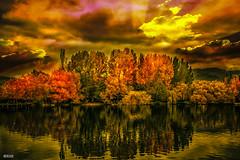 tardor Puigcerd (Imallofr) Tags: cerdanya puigcerd agua colors expousure earth sky landscape nature lake lago yellow orange luz light cielo
