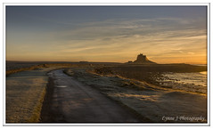 Frosty path to Lindisfarne (Blondie606 Photography) Tags: bamburghcastle sunrise sunset northumberland beach sea steetlypier longexposure lighhouse newcastlequay pastel frosty golden boats chemicalbeach seaham hartlepool