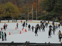 Central Park New York November 2016 (1228) (Richie Wisbey) Tags: new york central park manhattan ulmsted man made vista view spectacular miles walks lakes ice rink trump feeding sparrows hot dog american space open public beauty bow bridge oak trees grass richie richard wisbey flickr explore exploring zoo