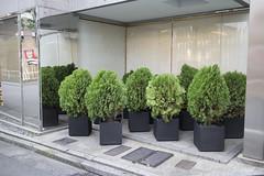 IMG_0117 (Dimitri SoyFeliz) Tags: japan shinjukuku shinjuku tokyo canon eosm eos 22mm 22mmf2 minimal minimalism minimalist newtopographics desolate outdoors hiragana