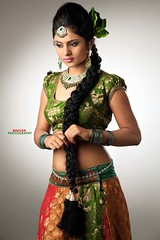 South Actress Deepika Das Traditional cum Hot Photos Set-3 (7)