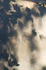 Vignes (Elo_M.) Tags: suisse valais vignes zollingersamen lesevouettes ombres serres tunnel bio biologic vine wein shadow ombre