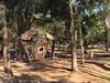 Greenville - Boo mit Peak, verbunden durch eine Gummigurtbrücke (LURKOI Especialistas en Equipamiento Comunitario) Tags: 113988 p20216 mexico bosquedechapultepec mexicocity greenville boo gummigurtbrã¼cke rubberbridge bambus bamboo peak accessnet bridge einstiegsnetz