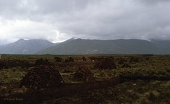 Irlande - Connemara - Tourbière (Fontaines de Rome) Tags: irlande ireland eire connemara tourbière
