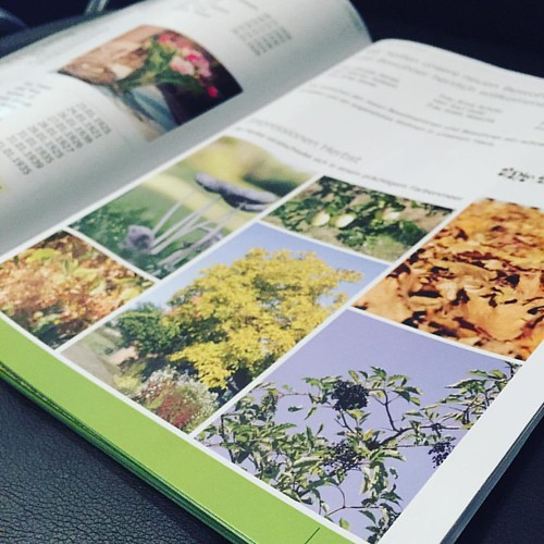 Firmenbroschüre #Broschüren #broschüre #broschueren #hauszeitung #hauszeitungen #jpswerbung #printmedien #print #druckmedien #druck #magazine #firmenzeitung #firmenzeitschrift #zeitschrift #zeitschriften #printisnotdead #prints #printdesign #printing #pri