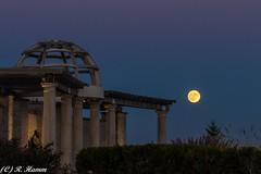 Coxhall Supermoon (Ronda Hamm) Tags: moon supermoon coxhallgardens indiana carmel canon 7dmarkii 100400mkii statues pergola gardens