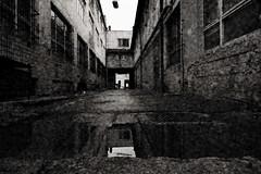 Incoming Darkness (Kojotisko) Tags: panasoniclumixdmcft2 bw brno czechrepublic czechia creativecommons