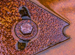 Rust Fish (Paul Rioux) Tags: rust rusty wet oxidation reflection metal metallic bolt fish arrow macromondays