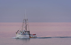 The pink sea (lizcaldwell72) Tags: water fishingboat sky hawkesbay newzealand sunset napier light