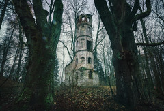 Rapunzel's Solitude (@hipydeus) Tags: tower ruin enchanted fairytale forest trees germany