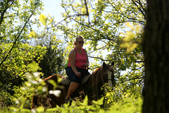 10/52 (blissfulescapades) Tags: outdoor portrait horse nature shawneemissionpark riding environmental candid dogwood52 dogwoodweek10