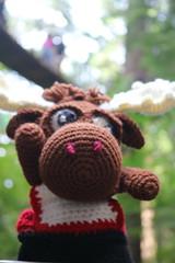 IMG_0674 (The Crochet Crowd) Tags: crochetmoose amigurumi moose crochet doll alaska britishcolumbia thecrochetcrowd michaelsellick jeannesteinhilber danielzondervan crochetcruise mooseontheloose