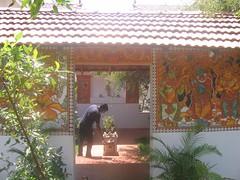 Art Of Living Bangalore Photography By CHINMAYA M.RAO Set-1 (98)