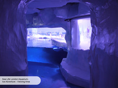 London Aquarium Ice Adventure Ice Cave (ravenhill design) Tags: design immersive interactive bas londonaquarium happycampers spidercrab ravenhill researchstation gentoopenguins britishantarcticsurvey iceadventure crawlthrough ravenhilldesign