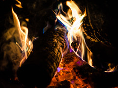 heavy metals (almostsummersky) Tags: blue green colors sparkles wisconsin night fire spring log purple flames burn madison smores westport metals coals
