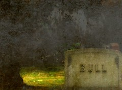 Bull (2bmolar) Tags: tombstone bull day157 odc 06jun13 spiritoftheage texturebyjerryjones day157365 3652013 365the2013edition ragetexture