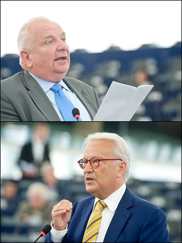 MEPs warnings on next EU Summit priorities (Joseph Daul, Hannes Swoboda)