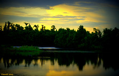 Sunset_051 (VinceFL) Tags: trees reflection nature skyandclouds fauxlomo manfrottotripod afsdxvrzoomnikkor55200mmf456gifed nikond7000 vinceflnikond7k
