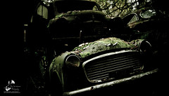 The Car Cemetery (geirkristiansen.net.) Tags: old autumn urban tree classic abandoned nature cemetery graveyard car trash forest vintage lost woods junk nikon rust moody ride sweden decay secret exploring wheels picture rusty forgotten rusted vegetation bil vehicle sverige rotten wreck derelict vestre trespassing urbanexploring ue interestingplaces skrot urbex carcemetery gammel rusten tapt tcksfors forlatt forfall steder delagt smashedup glemt bstns d700 naturetakesback fgelvik nikond700 2470mmf28g bilkirkegrd vstrafgelvik forlattesteder portraitofaclassic