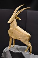 OUSA 2013 (blue paper) Tags: art robert paper origami convention fold lang folding ousa ousa2013