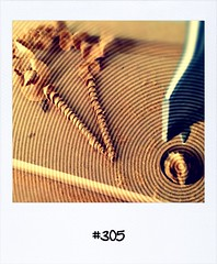 "#DailyPolaroid of 21-7-13 #305 • <a style=""font-size:0.8em;"" href=""http://www.flickr.com/photos/47939785@N05/9384382590/"" target=""_blank"">View on Flickr</a>"