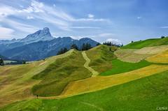 La Valle - Wengen: I colori dell'estate (The colors of summer) (cicrico) Tags: explore laval wengen sdtirol bolzano bozen altoadige lavalle sudtirolo valbadia gadertal coth5