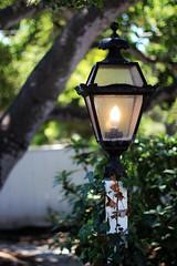 (Laurada_explora) Tags: california light beach ivy lamppost narnia carmel