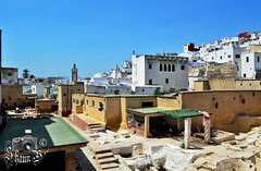 Tétouan Tannery (ShaunMYeo) Tags: morocco maroc marruecos tétouan marokko marrocos fas marokas marokkó maroko مغربي марокко