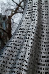 Woman of Words_7556 (Janice McKenna | eyemac23 | photography) Tags: newzealand sculpture aotearoa katherinemansfield virginiaking welliington womanofwords september2013 wellingtonsculpturetrust