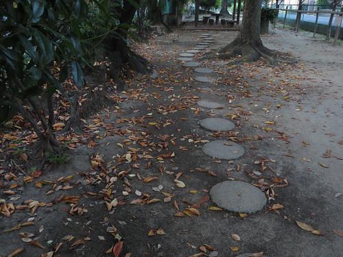 落葉が舞い散る