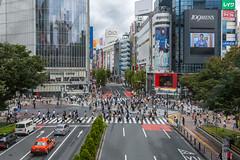Shibuya Crossing (davidcl0nel) Tags: canon tokyo shibuya pedestrian   shibuyacrossing canon5dmarkiii ef2410540lisusm