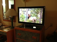 We monitor some HD video from our trip on a HD TV in our motel room..