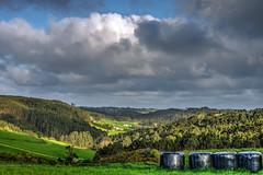 (ccc.39) Tags: verde rboles asturias nubes pacas hierba bosques prados gozn nuboso