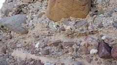 P4022960.jpg (DrPKHouse) Tags: arizona unitedstates loco bullhead fieldphoto bouse cibola fieldproject mapunit
