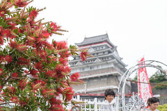20150523-DS7_0558.jpg (d3_plus) Tags: street bridge sea sky food plant flower building castle nature japan walking lunch spring cafe nikon scenery bokeh outdoor fine daily architectural telephoto alcohol bloom  tele streetphoto nikkor   shizuoka     dailyphoto  izu    atami thesedays 80200mm 80200      fineday      8020028 80200mmf28d  80200mmf28    80200mmf28af  architecturalstructure d700   nikond700  nikonfxshowcase aiafzoomnikkor80200mmf28sed