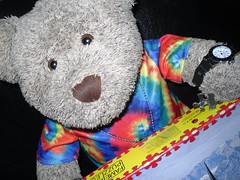 Found it! (pefkosmad) Tags: jigsaw puzzle leisure hobby pastime complete 1000pieces tedricstudmuffin teddy bear ted soft stuffed toy plush cute cuddly fluffy