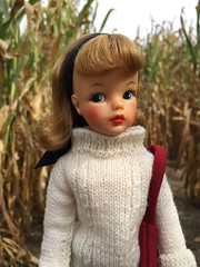 Tag Game: The Autumn Season is here! (Foxy Belle) Tags: tammy doll fall tag game autumn vintage sweater corn maze outside nature season here