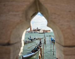 venice (giovannafilotto) Tags: canalgrande mare traffico venice venezia nikon nikond5200 gondola gondole pontedeisospiri