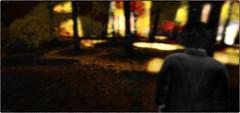 Evanescence Part Two (Akim Alonzo) Tags: secondlife visions japan tempura sakamoto evanescence