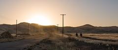 I-198 (Matthew Takata) Tags: landscape horse horseback riding field plain dusk sigmaart sigma35mmf14art nikon nikond810 outdoor fx
