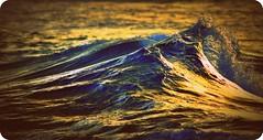 DSC_0193 Golden sea  (old style) (Rodolfo Frino) Tags: sea ocean naturalbeauty waves beautifulwaves colorfulwaves sunshine color colorful goldenhour sunset bluesea blueocean australia sydney water australianwaters powerfulsea powerfulocean oldstylephoto oldstylephotograph olderstylephoto olderstylephotograpoh oldstylepicture olderstylepicture roundcorners breakingwave breaking