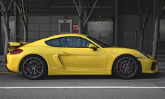 Porsche, Cayman GT4, Central, Hong Kong (Daryl Chapman Photography) Tags: be9 porsche german central car cars auto autos automobile canon eos 5d mkiii is ii 70200l f28 road engine power nice wheels rims hongkong china sar drive drivers driving fast grip photoshop cs6 windows darylchapman automotive photography hk hkg bhp horsepower brakes gas fuel petrol topgear headlights worldcars daryl chapman gt4 cayman
