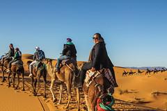 IMG_6278 (Israel Filipe) Tags: marrocos