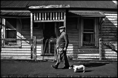Dogs 2 (Snapshots of Melbourne) Tags: street photography melbourne dogs men elderly williamstown
