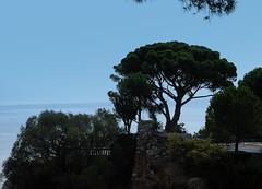 Colline du Chateau (Castle Hill), Nice. (Roly-sisaphus) Tags: nice southcarolina frenchriviera cotedazure
